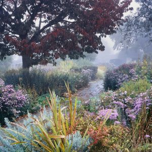 Autumn-in-the-Walled-Garden-R